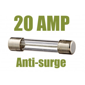 AEG Replacement Fuse 20Amp Anti-surge